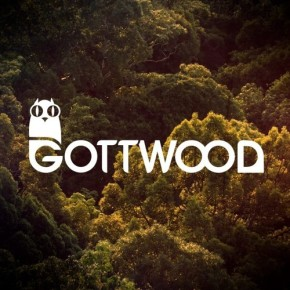 Gottwood image for blog